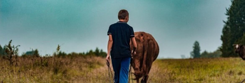 Ūkiai stambėja, bet ES vidurkis nepavejamas