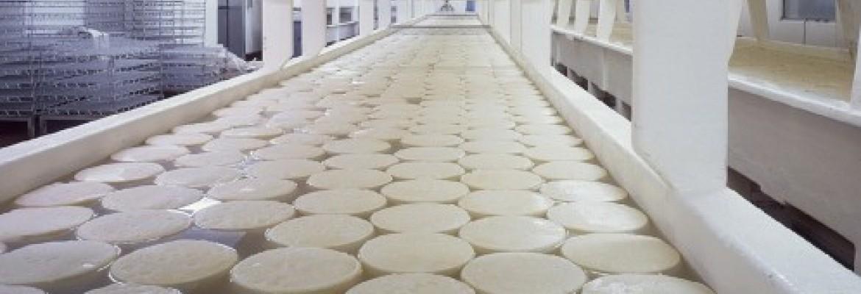 Lietuviai perdirbo daugiau pieno