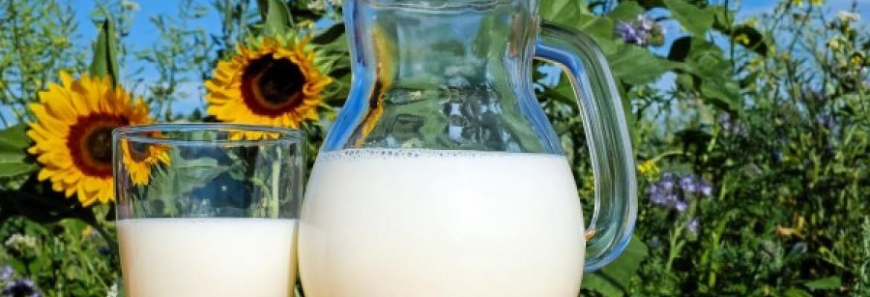 Pieno ūkiuose mažėja, produktų gamyba didėja