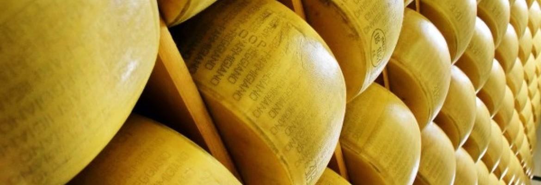 Pinga pieno produktai – gali mažėti žaliavos kaina